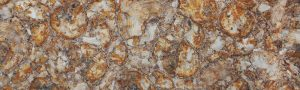 Yellow Petrified Wood