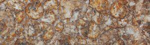 Yellow Petrified Wood